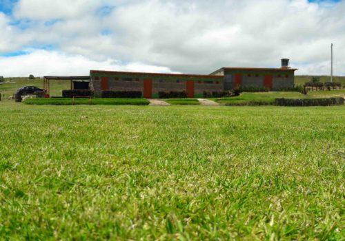 Sede3_Escuela_de_fútbol_Weymar_Olivares